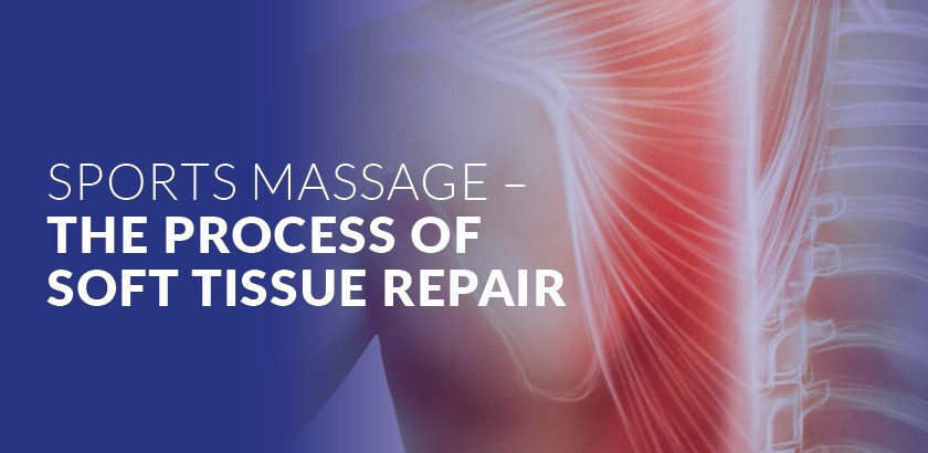 SPORTS MASSAGE – THE PROCESS OF SOFT TISSUE REPAIR: THE ACUTE AND SUB-ACUTE PHASES
